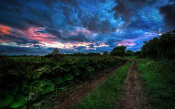 cielo, rboles, del, nubes, nube, montañas, tormenta, naturaleza, hierba,
