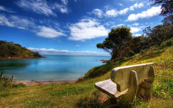 скамейка, nature