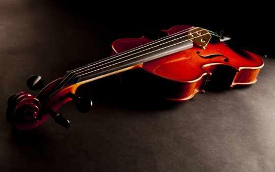 скрипка, струны, инструмент, музы, dark, ноты, бант,