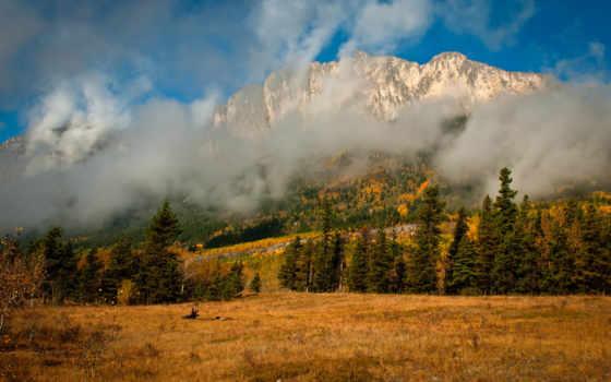 осень, mountains, гора, природа, trees, телефон, лес, desktop, mist,