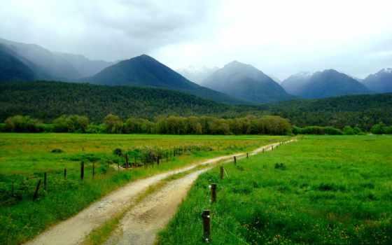 дорога, природа, высокого, качества, гуамское, ущелье, corporate, парниковый, трава,