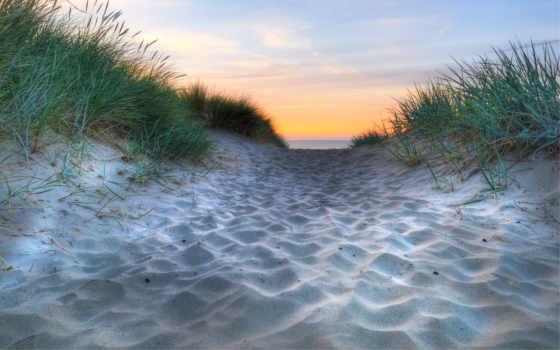 море, песок, трава, природа, пляж, пальмы, берег, ocean, water, white, пляжи,