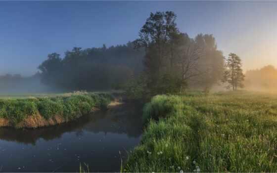 marsh, freshwater, tidal, non