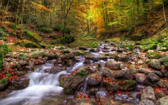 осень, камни