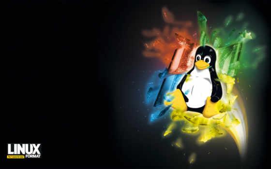 windows, linux, ubuntu