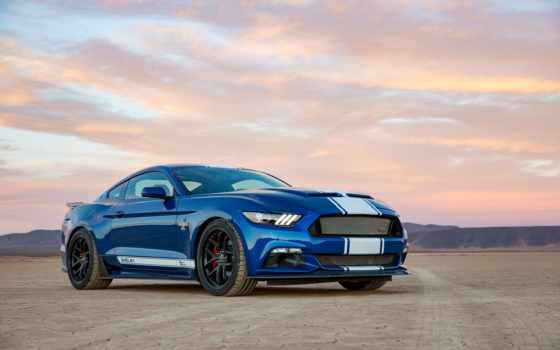 shelby, snake, супер, ford, mustang, anniversary, car, американский,