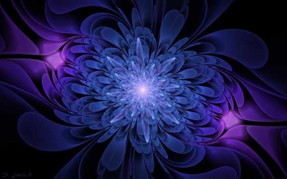blue, цветы, black