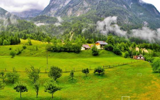лес, горы, деревья Фон № 80177 разрешение 1920x1200