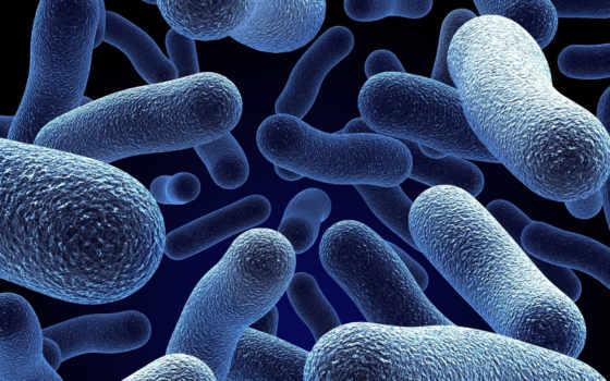 молекулы, бионик, blue