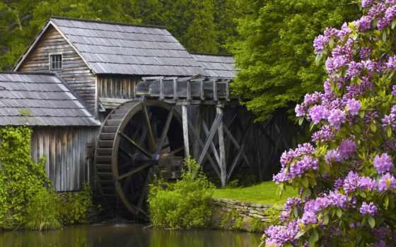 водяная, mill, природа