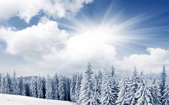 winter, природа, зимой, снег, sun, небо, trees,