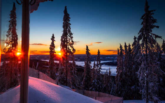 winter, trees, утро, снег, sun, rising, лес, гора, природа, рассвет, небо
