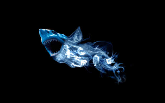 акула, абстракция