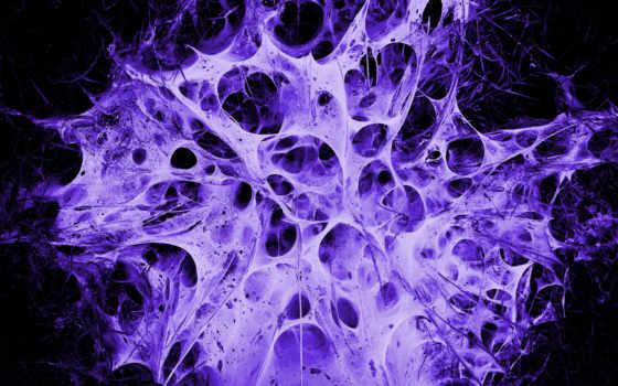 web, nest, фиолетовый, alien, картинка,