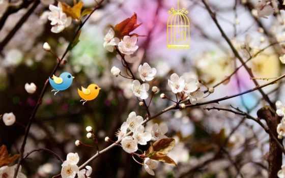 весна, девушки, долгожданная