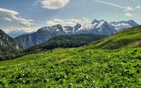 природа, поле, fone, гор, зеленое, неба, июнь, трава, deviantart,