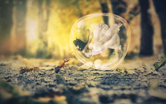 new, природа, год, happy, steemit, осень, free,