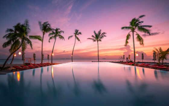 maldives, maldive, ocean, indian, закат, дерево, океан, palm, tropic, бассейн