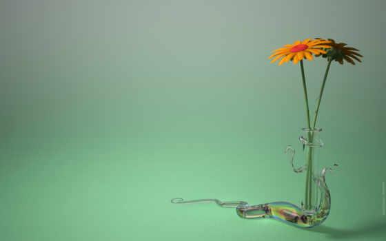 mobile, минимализм, free, зелёный, flower, flowers, art, ромашка, ваза, this, phone, download, оранжевая, background, хрустальная, ромашки, mətn, you, desktop,