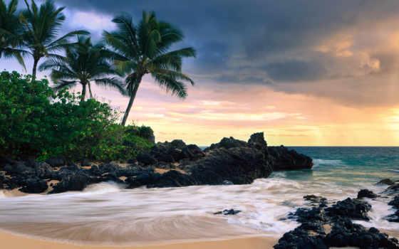 природа, desktop, пляж