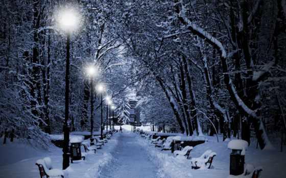 аллея, winter, снег, фонари, trees, зимой, ветки, совершенно, свой,