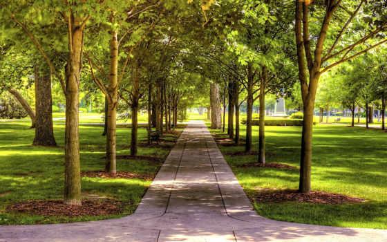 насаждения, зелёных, зеленые, насаждений, территории, парки, города, park, за,