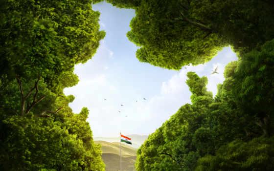 india, флаг, indian, природа, images, free, trees,