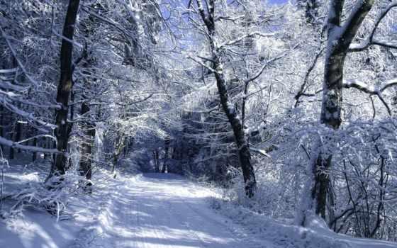 дорога, природа, фоны, фотошопа, winter, природы, devushki, rylik, рисунки, осень, туман,