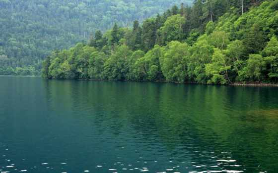 природа, лес, берегу, landscapes, разных, озера, unsubscribe, madhaha, holhudhoo,