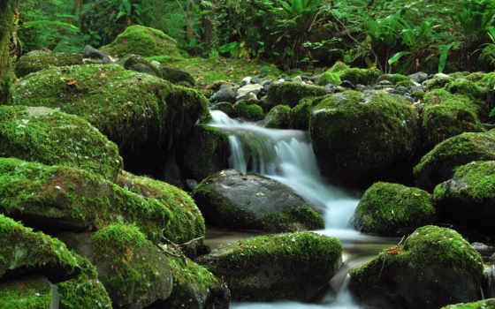 водопад, камни, зелёный