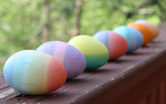 яйца, easter, праздник