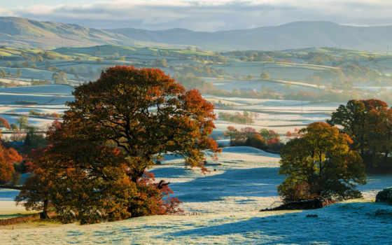 осень, hills, trees, иней, природы, снег, initial, шпалери, впервые,