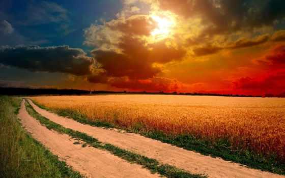 поле, закат, природа, дорога, margin,