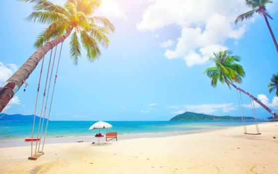 ,, пляж, небо, дерево, тропическая зона, people on beach, пальма, отпуск, Карибский, берег, arecales, море, стоковая фотография, tropical islands, ko samui, фотография, прибежище, морской курорт