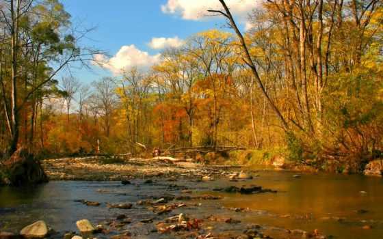 осень, золотая, заставки, ручей,