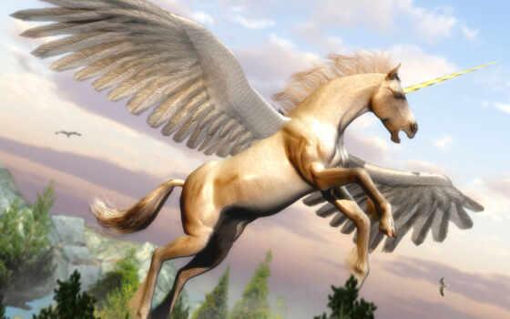 volando, unicórnio, por, pegaso, los, pegasos, imagenes, скачиваний, unicornios, las, caballo,