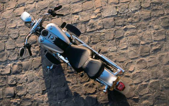 davidson, motorcycle, harley