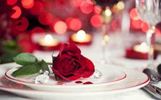 цветы, роза, red, часть, розы, plates, love, mridulat, красивые, possible,