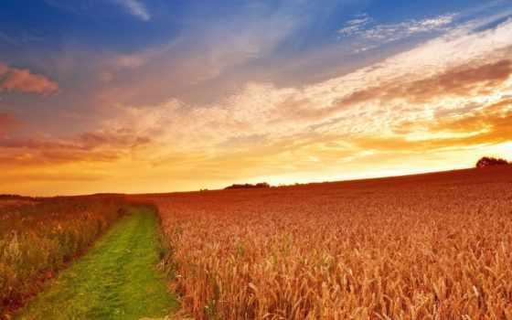 закат, ферма, природа, широкоформатные,