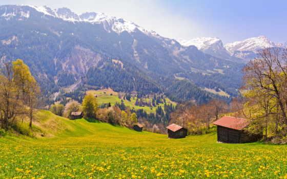 швейцария, поля, mountains, trees, деревня, slopes, resolution, desktop,