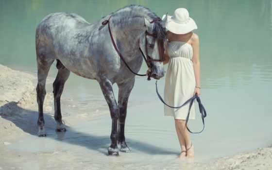 лошадь, девушка, лошади, под, уздечка, коня, белом, держит, платье,