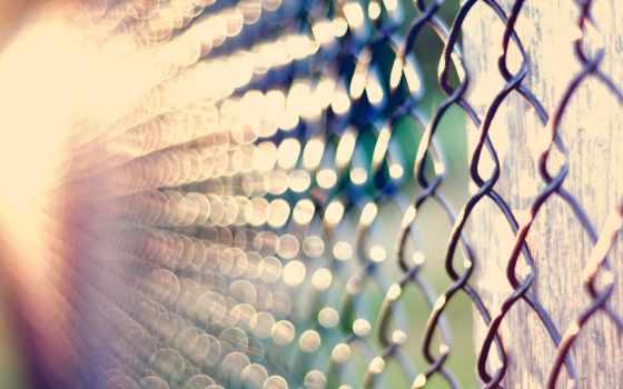 забор, сетки, сетка, рабица, своими, руками, рабицы, решетка, макро, ночь,