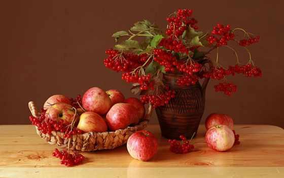 калина, bukiet, kompozycja, kwiaty, tapety, dzban, owoce, jabłka, koszyk, калина, life,