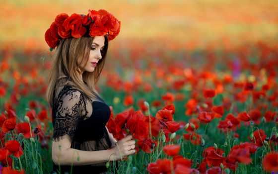 меня, пахнет, маки, summer, символ, cvety, id, you, красные, пригорке,