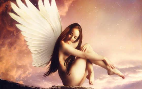 небо, крылья
