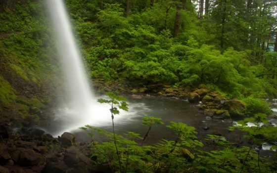 columbia, река, oregon, лес, falls, водопад, ручей, ponytail,