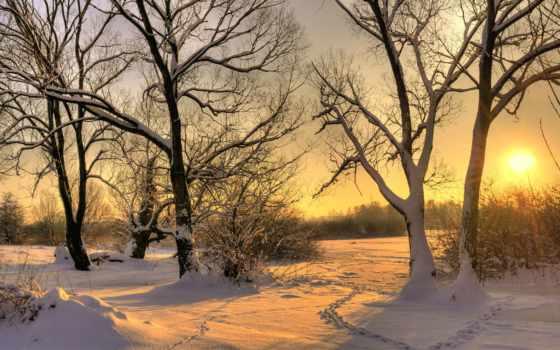 nieve, invierno, del, fondos, сол, con, paisaje, puesta,