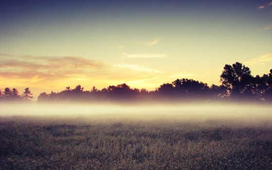 ecran, fond, paysages, brume, naturels, arbres, fonds, paysage, champs, природа, beau,