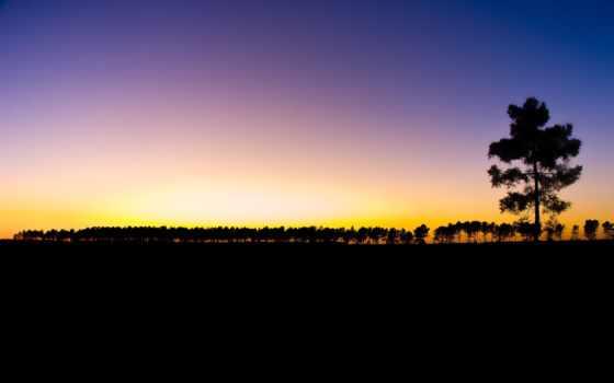 закат, лес, небо, дерево, пейзажи -, лет, добавлено, обоях, sun, озеро, отражение,