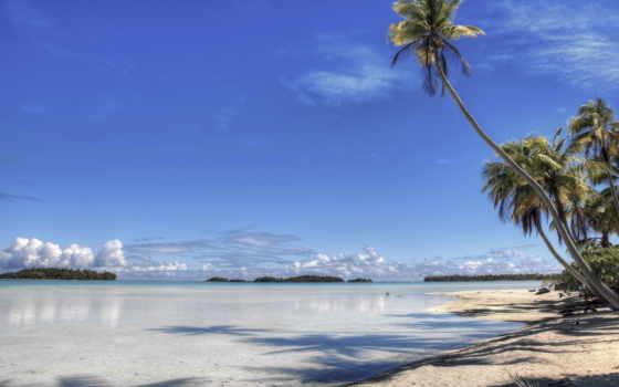 пляж, берег, совершенно